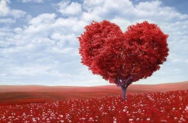 Amor: Relacionamentos saudáveis trazem bem estar para nossas vidas